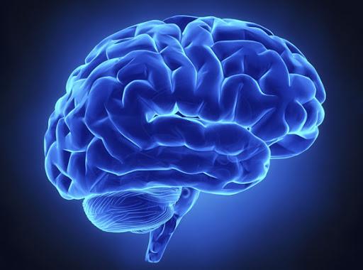 cerebro sano mientras envejeces
