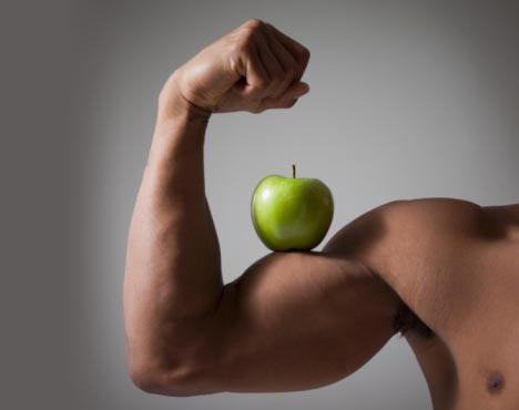 crecimiento de los músculos